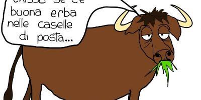 vignetta-bufala